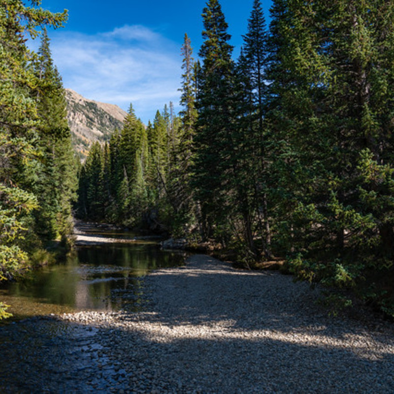 2. The Roaring Fork River