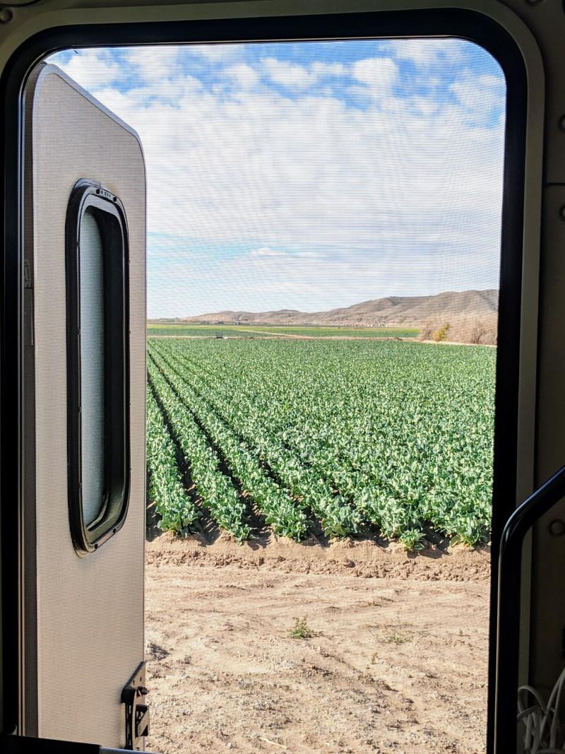 Window to Yuma, AZ